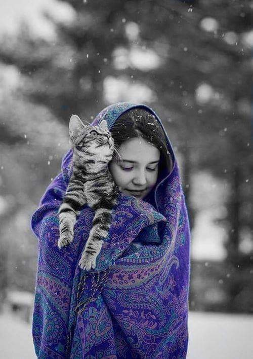 cat and little girl
